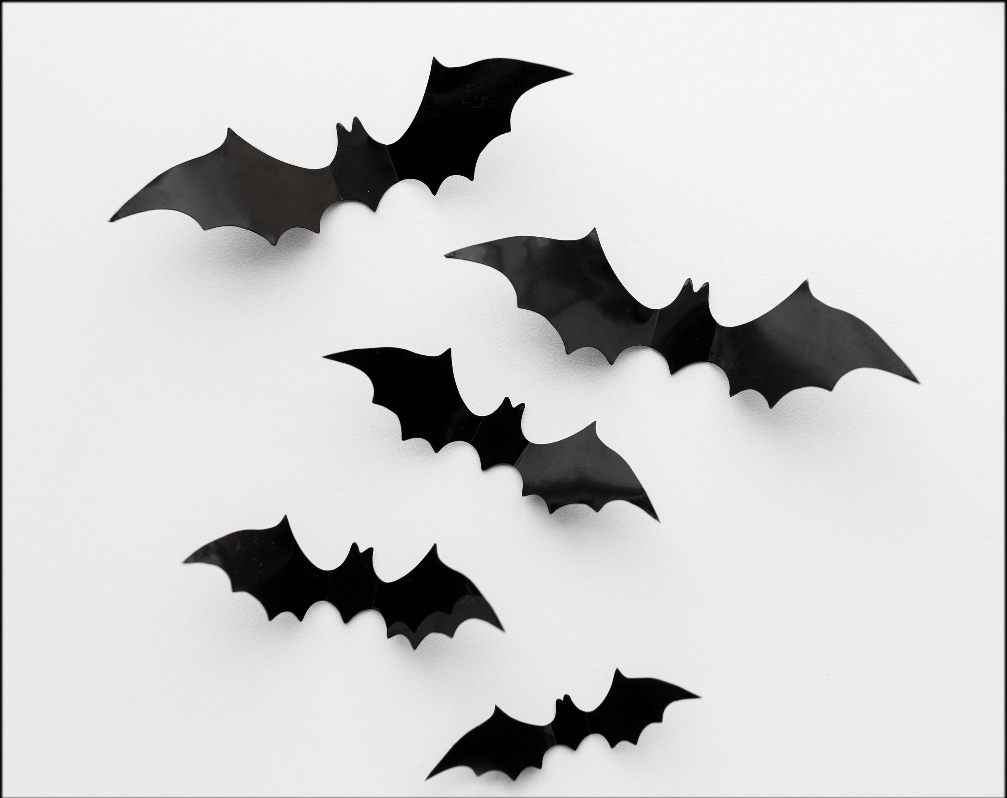 5 Bats