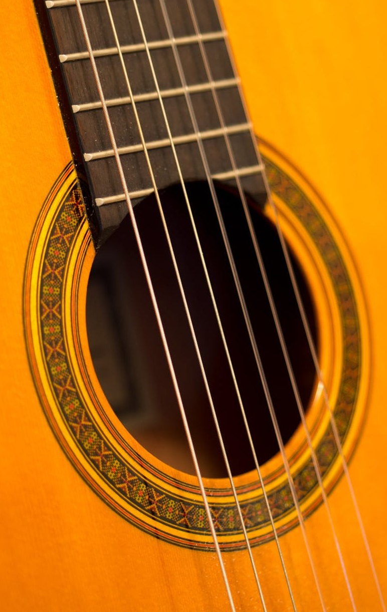acoustic acoustic guitar bass classic